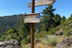 picarazos-villaverde-ruta-pinares-5